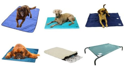 colling dog beds