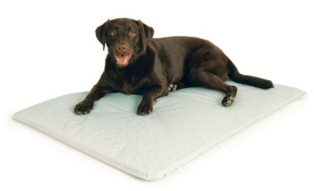 Cooling Dog Bed Mattress