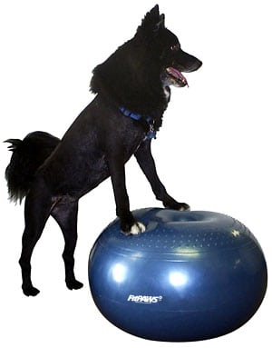 FitPAWS Donut Dog Exercise Ball