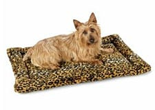 Comfortable Dog Bed For Recovering Dogs on Sale at FetchDog