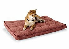 Comfortable Dog Crate Bed For Recovering Dogs on Sale at FetchDog