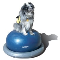 FitPAWS Donut Dog Exercise Rehab Training Ball with Holder