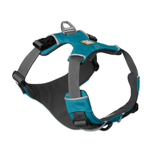 small Tripawd dog harness