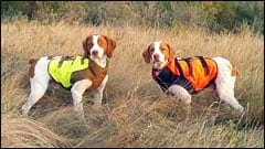 Tripawd chest protector jacket