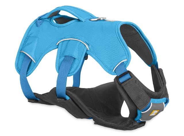 best Tripawd dog harness