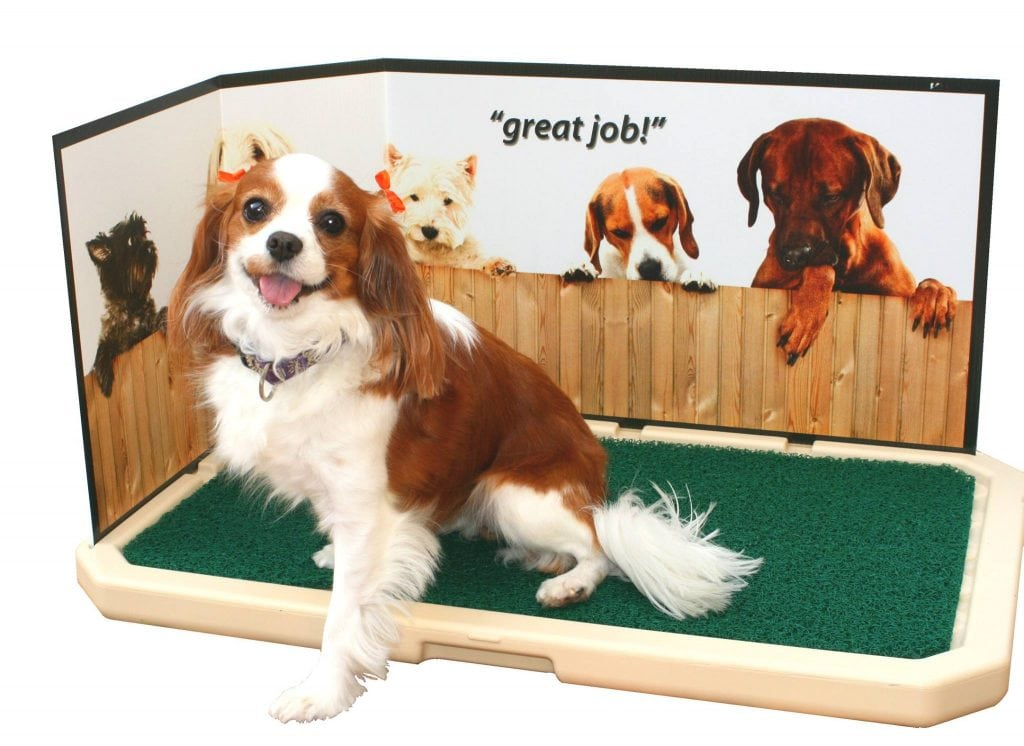 indoor pet toilet