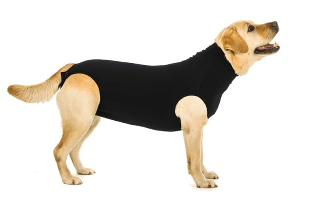 Suitical Pet Recovery Suit for Dogs