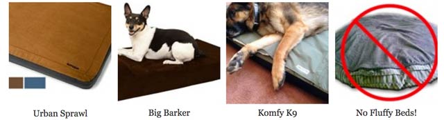 Best Dog Beds for Tripawds