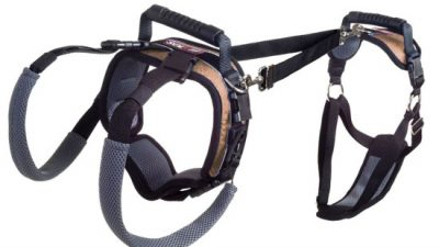 Mobility Dog Lifting Harness