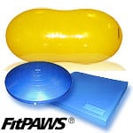 FitPAWS Dog Rehab Exercise Training Products