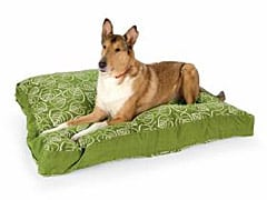 Comfortable Surgery Recovery Dog Bed