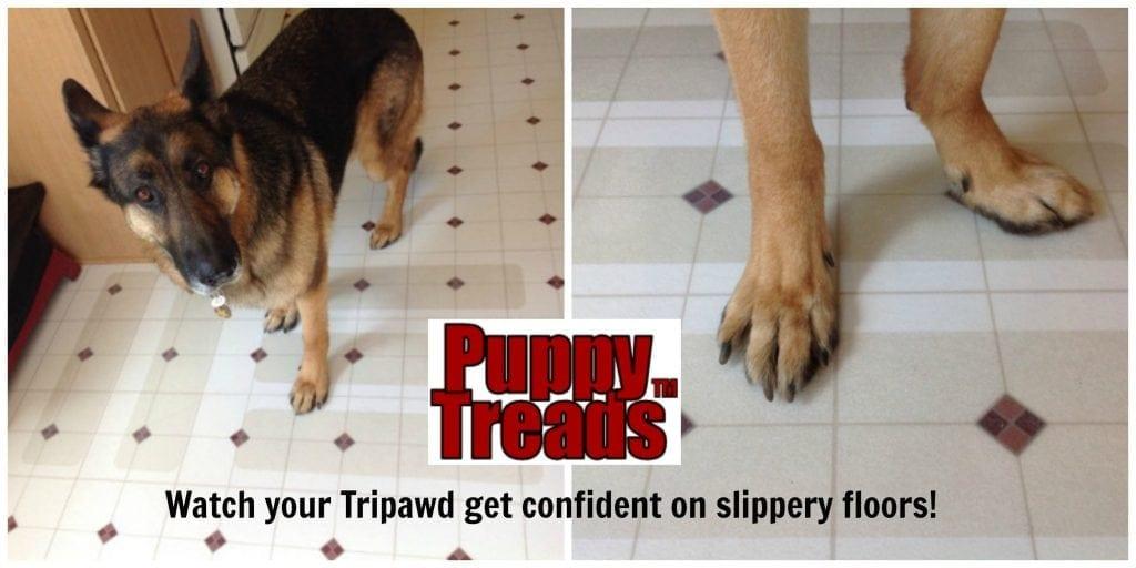 No-Slip floors for three-legged dog