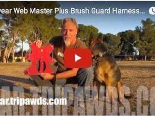 webmaster plus video