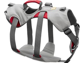 30301-DoublebackHarness-Right-NoLoops_500