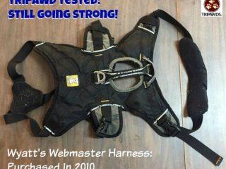 Tripawd Webmaster harness