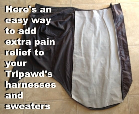 Tripawd's amputation pain