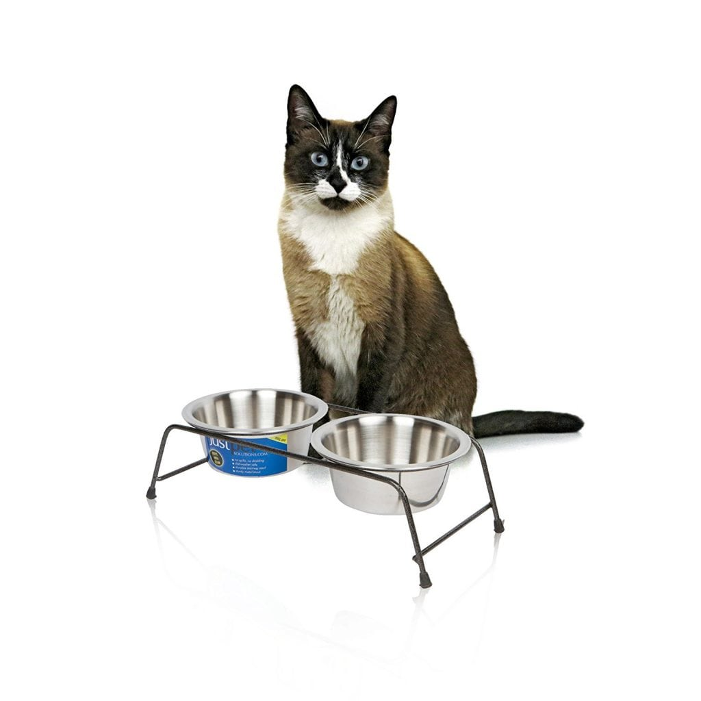 measure pet food bowls