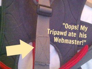 WebmasterGearFix