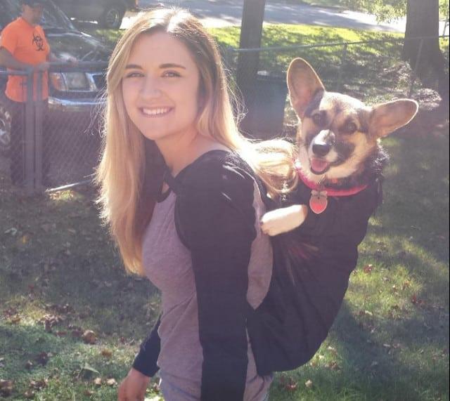 Tripawd dog backpack