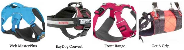 Best Harnesses for Tripawds