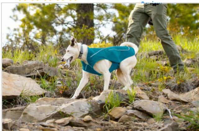 Tripawd dog jackets