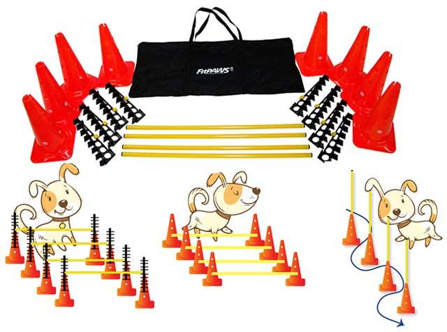 FitPaws Hurdle Set Agility Dog Training Kit