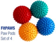FitPaws Paw Pods Dog Balance Exercise Balls