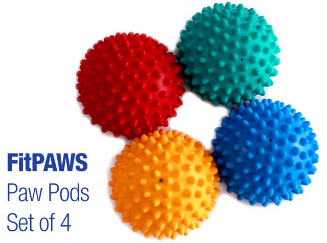 FitPaws Paw Pods Dog Balance Exercise Balls