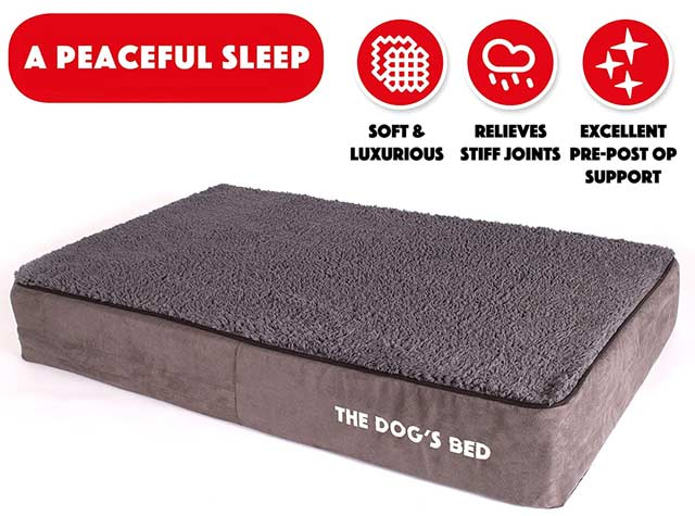 Thick Orthopedic Dog Bed