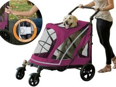 PetGear Big Dog Stroller