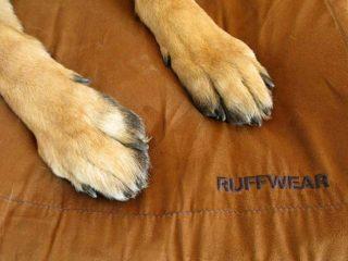 Urban Sprawl Dog Bed