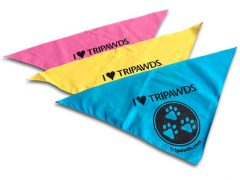 I Love Tripawds Dog Bandana