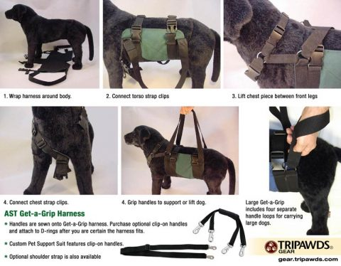 How To Fit Get A Grip Harness