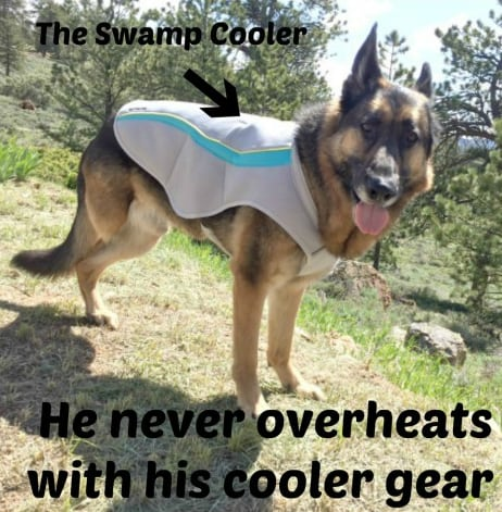 Tripawds Gear Rebate