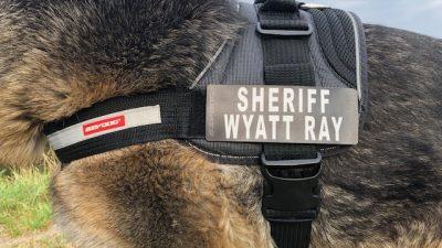 Custom Tripawd Convert Harness badge