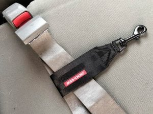 EzyDog Harness Seat Belt Restraint