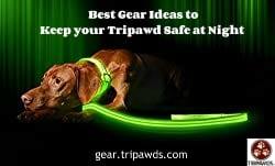 tripawd safe gear