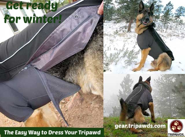 Tripawd sweater,Ruffwear,jacket,coat,winter,fleece,zippered,gear