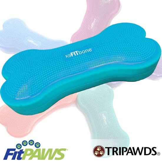 fitbone turquoise