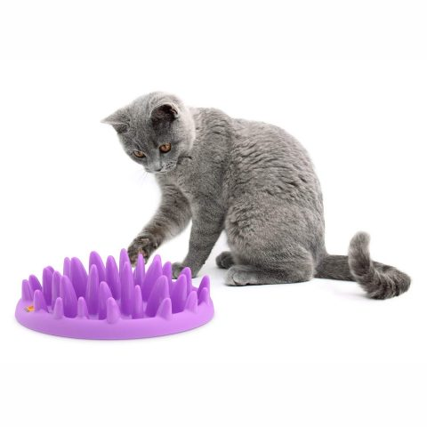 northmate cat feeder