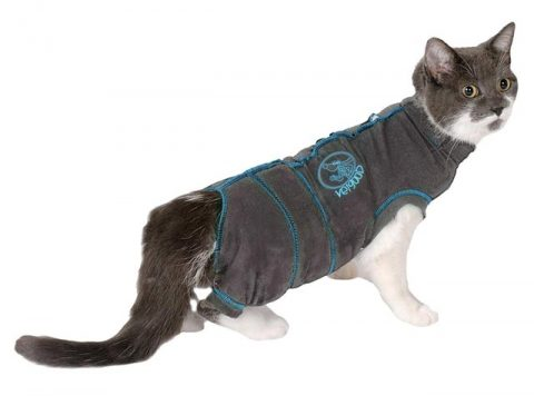 vetgood cat recovery suit