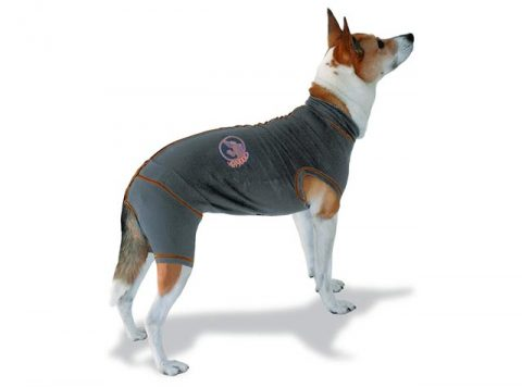 vetgood dog recovery suit