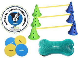 k9 fitness month kit