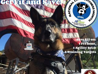 national canine fitness month