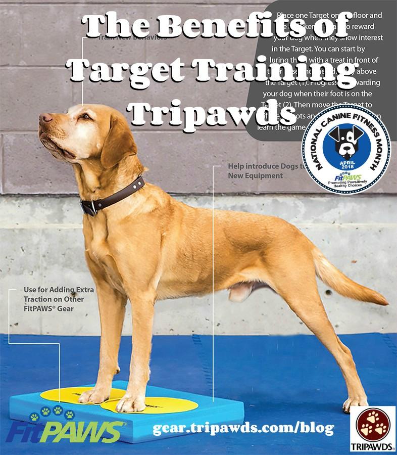 Tripawd target training