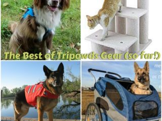 best tripawds gear list