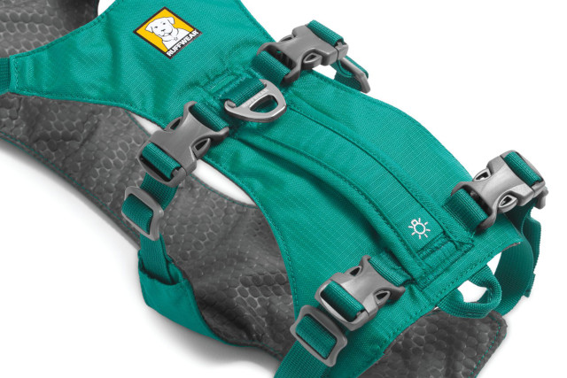 Tripawd support harness for three legged dogs