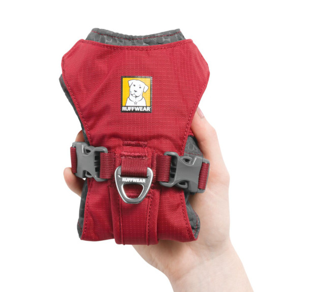 Compact harness for Tripawd dogs