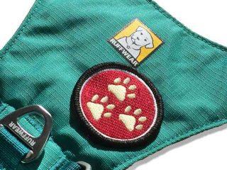 three paw patch