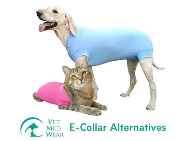 Vet Med Wear Recovery Suit for Tripawd cats and dogs